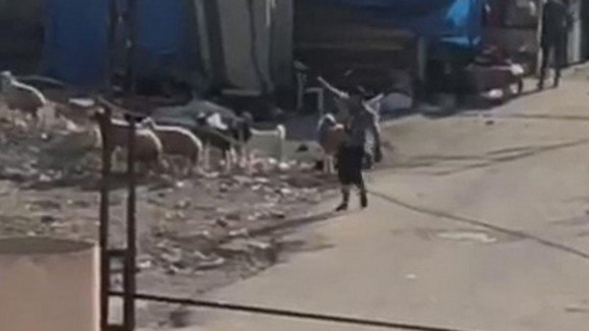 Adana'da iki grup arasında silahlı çatışma anları
